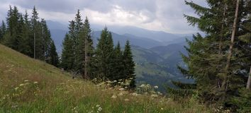 Καρπάθια διασχίζοντας intermountain τοπίων βουνών όψη της Ουκρανίας περιοχών transcarpathian στοκ εικόνα με δικαίωμα ελεύθερης χρήσης