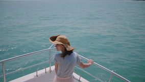Καταπληκτική πίσω άποψη που πυροβολείται του ευτυχούς επιτυχούς θηλυκού ταξιδιώτη που απολαμβάνει την ηλιόλουστη εξόρμηση θάλασσα απόθεμα βίντεο