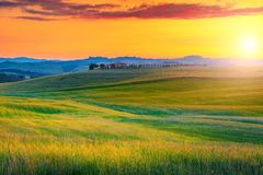 Καταπληκτικό τοπίο της Τοσκάνης με τους ζωηρόχρωμους τομείς ηλιοβασιλέματος και σιταριού, Ιταλία στοκ φωτογραφίες