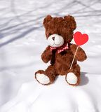 Καφετής teddy αντέχει κάθεται snowdrift στοκ εικόνες με δικαίωμα ελεύθερης χρήσης