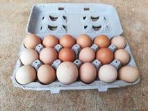 Καφετιά αυγά κοτόπουλου στοκ εικόνες