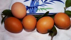 καφετιά αυγά φρέσκα στοκ εικόνα