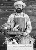 Καπέλο αχύρου της Farmer που παρουσιάζει τα φρέσκα λαχανικά Farmer με τα homegrown λαχανικά Φρέσκα οργανικά λαχανικά στη λυγαριά στοκ εικόνες