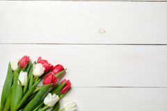 Κενή ευχετήρια κάρτα με τα λουλούδια τουλιπών στον άσπρο ξύλινο πίνακα Ρομαντική γαμήλια κάρτα, ευχετήρια κάρτα για της γυναίκας