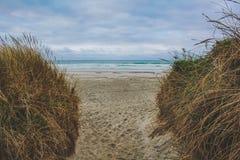 Κενή παραλία κοντά σε Dunedin, νότιο νησί, Νέα Ζηλανδία στοκ εικόνες