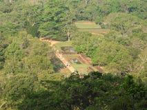 Κινηματογράφηση σε πρώτο πλάνο, άποψη του φρουρίου βουνών λιονταριών Sigiriya στην πρασινάδα, Σρι Λάνκα, μια σαφή ημέρα στοκ εικόνες