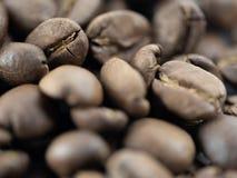 Κινηματογράφηση σε πρώτο πλάνο ενός σωρού των φασολιών καφέ στοκ εικόνες