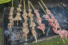Κλείστε αυξημένος του κρέατος ελαφιών σχαρών στοκ φωτογραφία με δικαίωμα ελεύθερης χρήσης