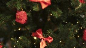 Κλείστε επάνω των κορδελλών και των διακοσμήσεων Χριστουγέννων στο τεχνητό δέντρο έλατου φιλμ μικρού μήκους