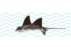 Κοινός stingray κολύμβησης στο αφηρημένο υπόβαθρο επίσης corel σύρετε το διάνυσμα απεικόνισης διανυσματική απεικόνιση