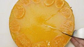 Κοπή ενός κομματιού cheesecake με tangerine τη ζελατίνα στην κορυφή φιλμ μικρού μήκους