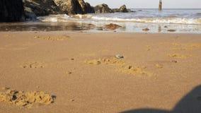 Κύματα άποψης θάλασσας που κτυπούν τους βράχους ακτών κοντά που αυξάνονται Κίτρινη άμμος φιλμ μικρού μήκους