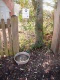 κύπελλο νερού σκυλιών έξω από τα κατοικίδια ζώα επαρχίας πορειών πυλών στοκ εικόνα με δικαίωμα ελεύθερης χρήσης
