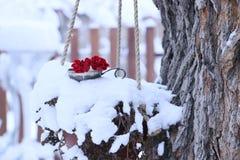 Κόκκινα λουλούδια στο χιονώδες δέντρο στοκ φωτογραφία