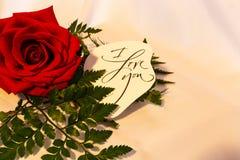 Κόκκινος αυξήθηκε με την πρασινάδα και μια αγάπη ι εσείς σε ένα άσπρο υπόβαθρο στοκ φωτογραφία
