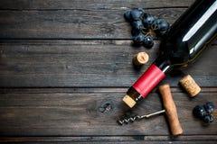 κόκκινο κρασί σταφυλιών μ&pi στοκ εικόνες με δικαίωμα ελεύθερης χρήσης