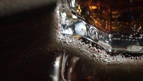 Κόλα και πάγος στο γυαλί απόθεμα βίντεο