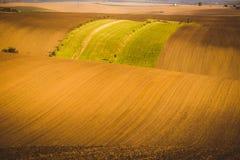 Κυματιστοί τομείς φθινοπώρου σε Moravian Τοσκάνη, Δημοκρατία της Τσεχίας στοκ εικόνα