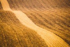 Κυματιστοί τομείς φθινοπώρου σε Moravian Τοσκάνη, Δημοκρατία της Τσεχίας στοκ φωτογραφία με δικαίωμα ελεύθερης χρήσης