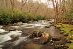 Λίγος ποταμός στο μεγάλο εθνικό πάρκο βουνών Smokey στοκ εικόνες