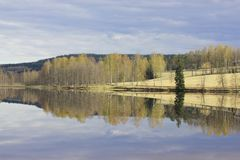 Λίμνη και δέντρα την άνοιξη στοκ εικόνες