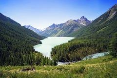 Λίμνη Kucherlinskoe, ευρεία άποψη, Altai, Ρωσική Ομοσπονδία Όμορφο τοπίο χωρίς ανθρώπους Όμορφη πράσινη λίμνη βουνών στοκ φωτογραφίες με δικαίωμα ελεύθερης χρήσης