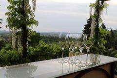 Λαμπρό γυαλί stemware σε ένα ράφι γυαλιού που αγνοεί την άσπρη άμπελο wisteria σε μια κοιλάδα Cortona στοκ φωτογραφίες με δικαίωμα ελεύθερης χρήσης