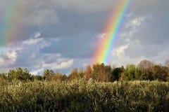 Λαμπρό ουράνιο τόξο πέρα από έναν τομέα φθινοπώρου στο Μίτσιγκαν στοκ εικόνες με δικαίωμα ελεύθερης χρήσης
