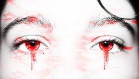 Μάτια ενός εξαιρετικά, οξυδερκή βλέμματος Κλείστε αυξημένος στοκ εικόνες