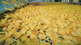 Μέρη των κίτρινων πατατακιών που κινούνται σε μια γραμμή εργοστασίων, αυτοματοποιημένος εξοπλισμός εργοστασίων στην εργασία απόθεμα βίντεο