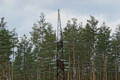 Μαύρος ηλεκτρικός πόλος σιδήρου με τα καλώδια στα πλαίσια των δέντρων και του ουρανού πεύκων στοκ φωτογραφία