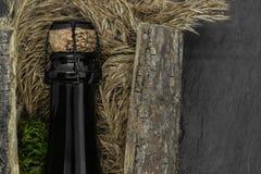 Μαύρο μπουκάλι γυαλιού CHAMPAGNE που τοποθετείται στο φλοιό δέντρων με την κλίση και το βρύο στο μαύρο υπόβαθρο πετρών στοκ εικόνα με δικαίωμα ελεύθερης χρήσης