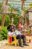 Μασκότ πειρατών σε Margaritaville του Jimmy Buffett στοκ εικόνες