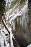 Μεγάλο φαράγγι γερακιών στο σλοβάκικο εθνικό πάρκο παραδείσου το χειμώνα, Σλοβακία στοκ εικόνες