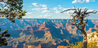 Μεγάλο φαράγγι, νότιο πλαίσιο, Αριζόνα, Ηνωμένες Πολιτείες της Αμερικής στοκ φωτογραφία με δικαίωμα ελεύθερης χρήσης