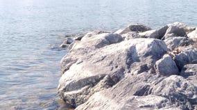 Μερικές μεγάλες πέτρες σε μια ακτή λιμνών απόθεμα βίντεο