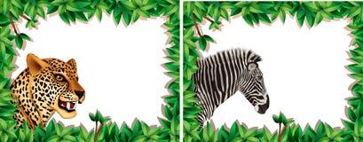Με ραβδώσεις και λεοπάρδαλη στο πλαίσιο φύσης ελεύθερη απεικόνιση δικαιώματος