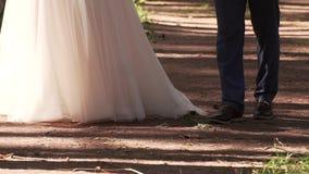 Με παντρεψτε σήμερα και καθημερινά Χέρια εκμετάλλευσης ζεύγους Newlywed, πυροβολισμός σε σε αργή κίνηση απόθεμα βίντεο