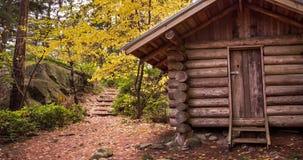 Μια κινούμενη εικόνα μιας καμπίνας κούτσουρων στο πάρκο Lighhouse, δυτικό Βανκούβερ, σε ένα δάσος το φθινόπωρο φιλμ μικρού μήκους