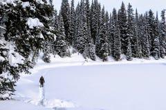 Μια νέα γυναίκα που γύρω από τη λίμνη νησιών σε Fernie, Βρετανική Κολομβία, Καναδάς Το μεγαλοπρεπές χειμερινό υπόβαθρο είναι πανέ στοκ φωτογραφίες