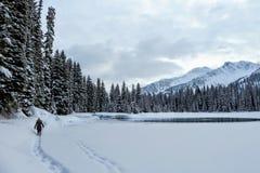 Μια νέα γυναίκα που γύρω από τη λίμνη νησιών σε Fernie, Βρετανική Κολομβία, Καναδάς Το μεγαλοπρεπές χειμερινό υπόβαθρο είναι πανέ στοκ φωτογραφία