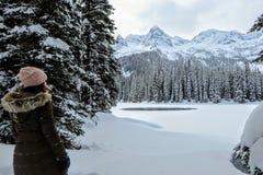 Μια νέα γυναίκα που θαυμάζει τις χιονώδεις απόψεις της λίμνης νησιών σε Fernie, Βρετανική Κολομβία, Καναδάς στοκ εικόνα