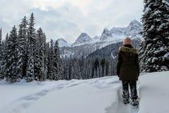 Μια νέα γυναίκα που θαυμάζει τις χιονώδεις απόψεις της λίμνης νησιών σε Fernie, Βρετανική Κολομβία, Καναδάς στοκ εικόνες