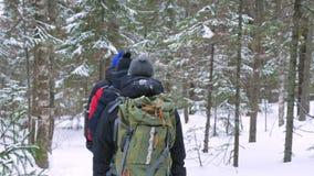 Μια ομάδα τουριστών με τα σακίδια πλάτης στους ώμους τους περνά από το χειμερινό δάσος απόθεμα βίντεο