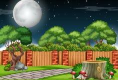 Μια σκηνή κήπων τη νύχτα διανυσματική απεικόνιση