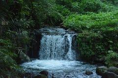 Μικρή άποψη ποταμών με τις πτώσεις νερού στοκ εικόνες με δικαίωμα ελεύθερης χρήσης