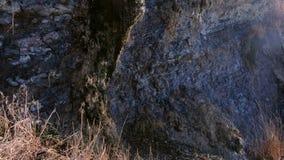 Μικρό ρεύμα νερού σε έναν βράχο μετά από τη βροχή στενό χρωμάτων ύδωρ όψης κρίνων μαλακό επάνω φιλμ μικρού μήκους