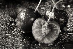 Μονοχρωματικός καλλιτεχνικός ακραίος στενός επάνω δύο και φρούτα κατά το ήμισυ τεμαχισμένα κερασιών με τους μίσχους και κοιλώματα στοκ φωτογραφία