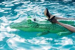Μοντέρνα προϊόντα παπουτσιών και δέρματος διογκώσιμος κροκόδειλος στην πισίνα στοκ φωτογραφίες με δικαίωμα ελεύθερης χρήσης