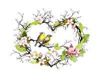 Μορφή καρδιών με τους κλαδίσκους, τα λουλούδια άνοιξη, φύλλα και δύο πουλιά Floral στεφάνι Watercolor για το γάμο απεικόνιση αποθεμάτων